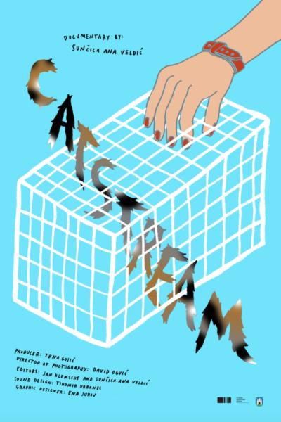 Catstream - poster